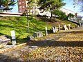 Logroño - Casa de las Ciencias, jardín de rocas.JPG