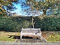 Long shot of the bench (OpenBenches 9465-1).jpg