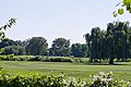Looking across White and Red Courses - East Potomac Park Golf Course - East Potomac Park - 2013-08-25.jpg