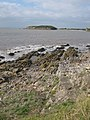 Looking from Little Island to The Knap, Barry - geograph.org.uk - 2583716.jpg