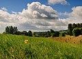 Looking through the grass to Haimwood Farm - geograph.org.uk - 884299.jpg