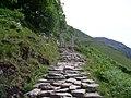 Looking to footbridge on the Ben Nevis path - geograph.org.uk - 856534.jpg