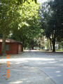 Lucca Italy Viale delle Mura Urbane.PNG
