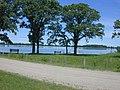 Luce Line Bike-Walk Trail, Cosmos MN - Lake Thompsom - panoramio (1).jpg