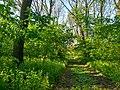 MD.DN.Rediul Mare - park of Rediul Mare - apr 2018 - 81.jpg