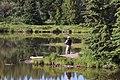 Maclean Creek Kananaskis Alberta Canada (27159184564).jpg