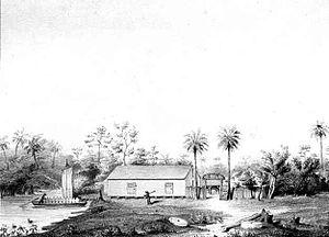 Magnolia, Florida - Drawing of Magnolia, Florida (1842)