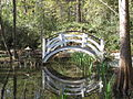 Magnolia Plantation and Gardens - Charleston, South Carolina (8555464311).jpg
