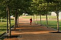 Man Jogging on Arch Grounds (e6c65c62-6a31-485c-9969-bba5300005a9).jpg