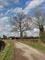 Mansmoor Road - geograph.org.uk - 352734.jpg