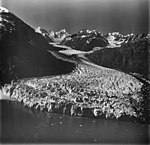 Margerie Glacier, tidewater glacier terminus and small icebergs in the lake, August 31, 1977 (GLACIERS 5639).jpg