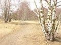 Marienfelde - Feldweg (Country Path) - geo.hlipp.de - 34580.jpg
