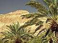 Masada by Dainis Matisons (3308114713).jpg
