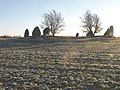 Menhirs in Scone.jpg