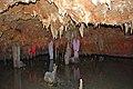 Meramec Caverns 0093.jpg