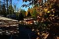 Mercer Slough Environmental Educational Center from the 'Treehouse'.jpg