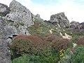 Mgarr, Malta - panoramio (116).jpg