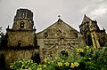 Miag-ao Church and its beautiful flowers.jpg