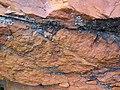 Microsyenite dike (Precambrian; Michipicoten River Bridge South roadcut, south of Wawa, Ontario, Canada) 23 (47924848436).jpg