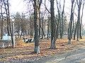 Mohyliv-Podilskyi city park 03.jpg