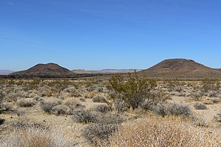 Cima volcanic field volcanic field in San Bernardino County, California