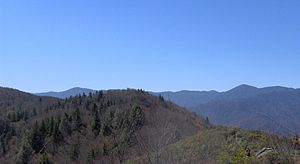 Mount Cammerer - Looking southwest from Mt. Cammerer; the two peaks in the distance are Luftee Knob (left) and Mt. Guyot (right).
