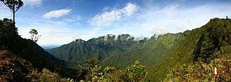 Mount Bosavi - Image: Mount Bosavi pad pan