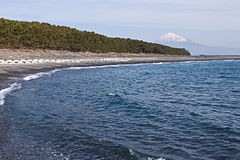 Mt.Fuji from Miho Coast 08.jpg