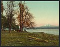 Mt. Hood from the Columbia River-LCCN2008679567.jpg