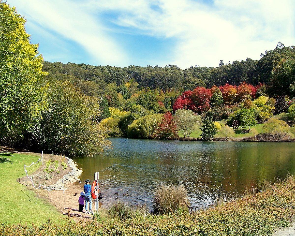 Mt Lofty Botanic Garden Lake.jpg