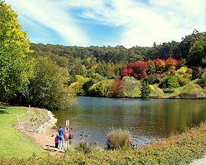 Mount Lofty Ranges - Mount Lofty Botanic Garden Lake