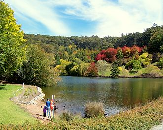 Mount Lofty Botanic Garden - Mount Lofty Botanic Garden Lake