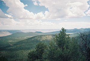 Mount Trumbull Wilderness - View from the top of Mt. Trumbull