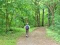 Mueggelhort - Uferweg (Lakeside Path) - geo.hlipp.de - 36679.jpg