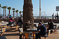 Muscle Beach and Chess Beach, Santa Monica (5847210301).jpg