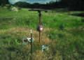 NRCSCO01014 - Colorado (1419)(NRCS Photo Gallery).jpg