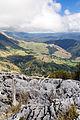 NZ010415 Takaka Hill Walkway 02.jpg