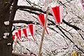 Nakameguro 2009-04-05 (3448458879).jpg