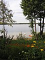 Narty (jezioro) od wsi Narty 2005.jpg