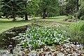 National Botanic Garden,Dublin,Ireland - panoramio (37).jpg