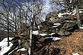 National nature resereve Jezerka in spring 2017 (17).JPG