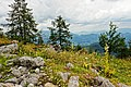 Nationalpark Berchtesgaden, Zwischen Falzalm und Watzmannhaus.jpg