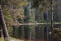 Nationalpark Schwarzwald Wildsee-16.jpg