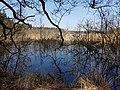 Naturschutzgebiet Großer Rußweiher 04.jpg