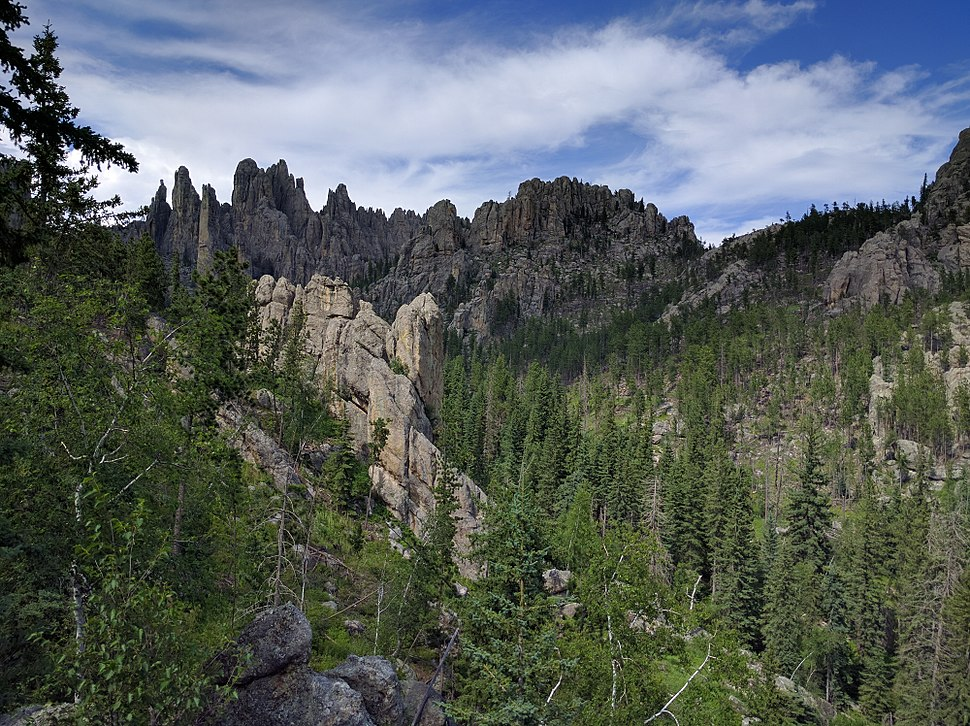 Needles Highway 05