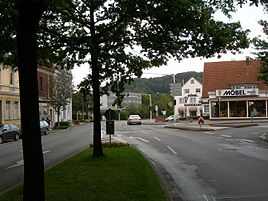 Nierenhof Wikipedia