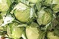 Nigerian Cabbage.jpg
