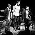 Nitcho Reinhardt Trio (234828).jpg