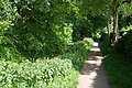 Nuns Walk, Hyde - geograph.org.uk - 1327199.jpg
