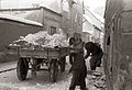 Odvažanje snega v Vetrinjski ulici 1956.jpg